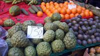 Funchal - Besuch der Markthalle