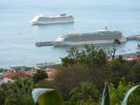 Blick vom Botanischen Garten auf den Hafen