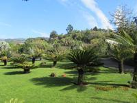 IBotanischer Garten in Funchal