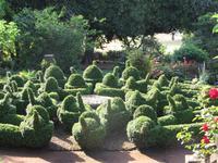Garten der Familie Blandy