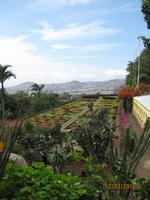 IMG_2992 Zu Besuch im Botanischen Garten von Funchal