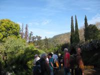 IMG_3010 Blütenpracht in der Quinta Palheiro