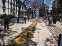 Blumenteppich in Funchal