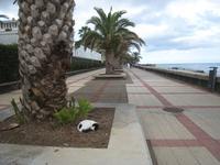 Promenade in Canico de Baixo