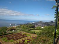 Blick über den Bot.Garten auf Funchal