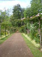Paleiro Gardens