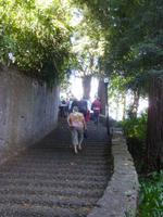 Aufstieg zum Monte