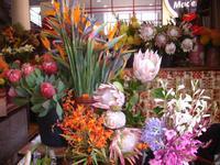 Markthalle in Funchal mit Blumen