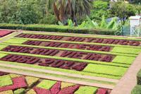 Botanischer Garten - Funchal