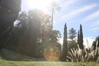 Garten der Familie Blandy_13