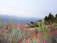 sonniger Morgen in der Quinta Splendida