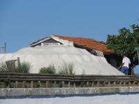 Saline in Aveiro