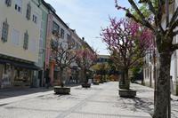 Braga (5)