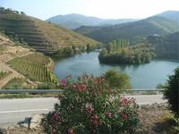 Blick ins Douro-Tal