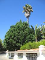 670 Algarve