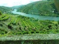 05.06.2019, Douro-Tal in der Nähe von Pinhao