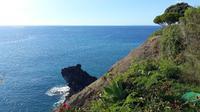 Fußweg nach Camara de Lobos