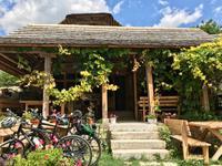 Butuceni: Die Dorfgaststätte