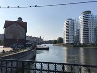 Kaliningrad: Neu und Alt
