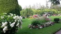 Garten Katharinenpalast 1
