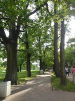 Park des Katharinen Palastes