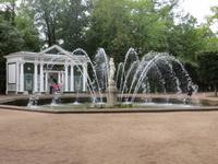 in Peterhof