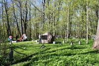 Alter Friedhof in Kronstadt