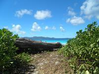 Aride Island - Ausflug zum Vogelschutzreservat