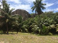 Traumhafte Kulisse auf Sister Island