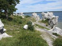 Rauksteine bei St.Olofsholm Gotland