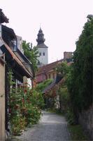Visby die Stadt der Rosen