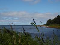 Küste in Eckerö