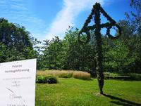 2366 Auf dem Versammlungsplatz des Heimatvereins steht noch der geschmückte Pfahl vom  Mittsommernachtsfest