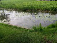Ein Teich neben dem Schloss