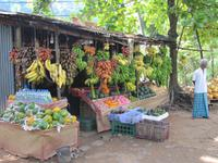 Obststand auf Sri Lanka - haben Sie schon einmal rote Bananen gegessen?