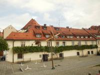Maribor Älteste Weinstock Europas