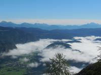 Berg Vogel