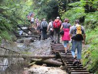 Schlucht Sucha Bela im Slowakischen Paradies