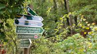 weiter in Richtung Wolfsberg
