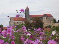 Blick zur Stiftskirche Quedlinburg