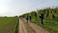 Wein, Weib & Gesang in Meißen – Benjamin´s Treuekundenreise