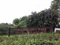 Orchideengarten Kuala Lumpur
