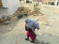 244 der tunesische Süden