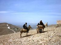 Eselsritt auf die Bergspitze, Nemrut Dagi