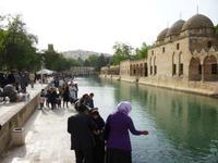 Halil-Rahman-Medrese mit den legendären Karpfenteichen
