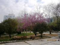 Taxim Park