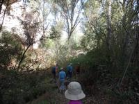 Wanderung durch die Gomeda und Üzgeni Täler