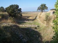 Schliemanngraben in Troja