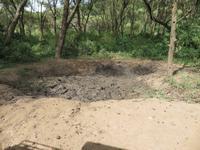 Manyara-Nationalpark - Elefantensuhle