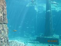 Im Atlantis